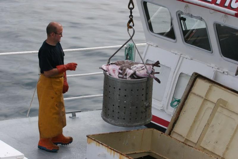Retour de pêche au Guilvinec Img_3610