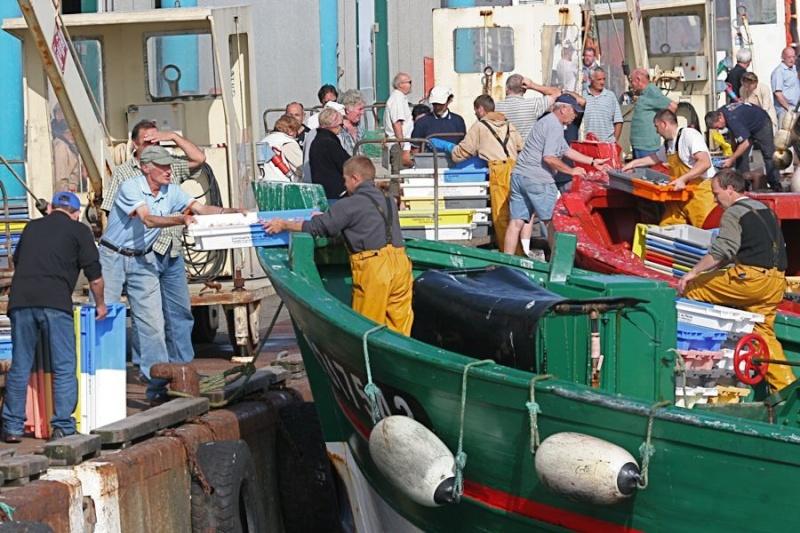 Retour de pêche au Guilvinec Img_3612