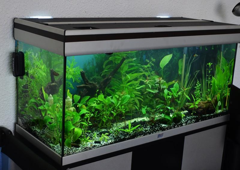 Mes aqua  Aqua110