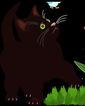 Ohé, petite chatte sourde 8qdros10