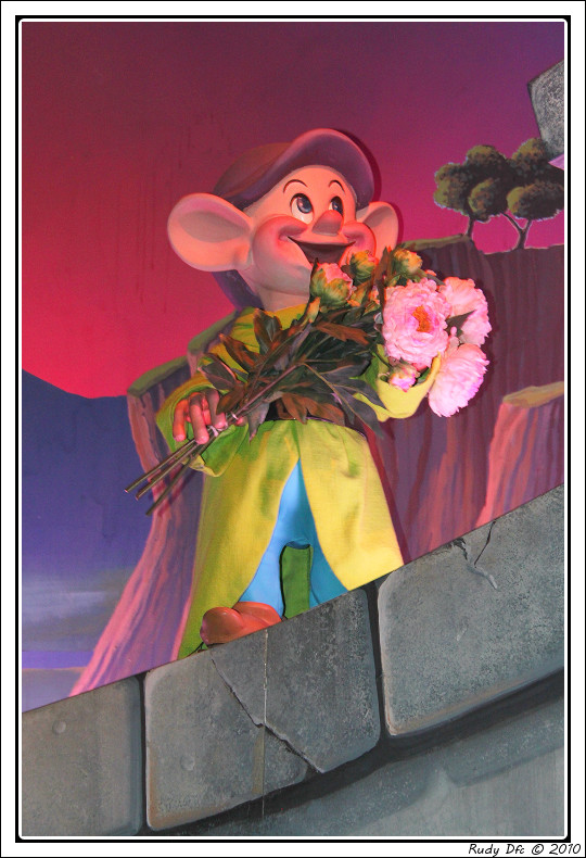 Attraction Blanche Neige et les 7 nains - Page 2 Img_0643