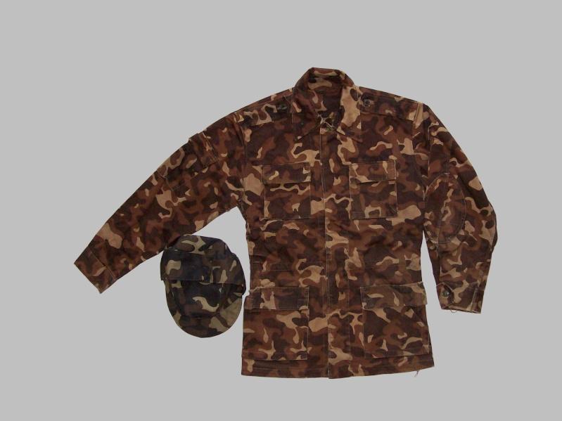Ukrainian camouflage 100_5810