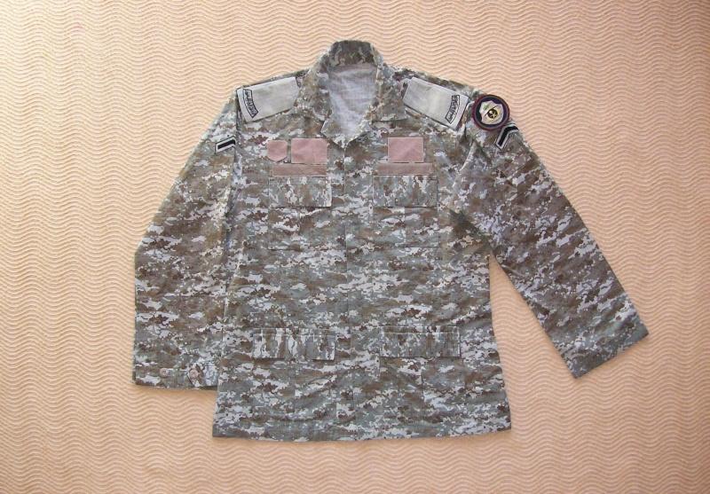 Royal Saudi Land Forces 100_6039