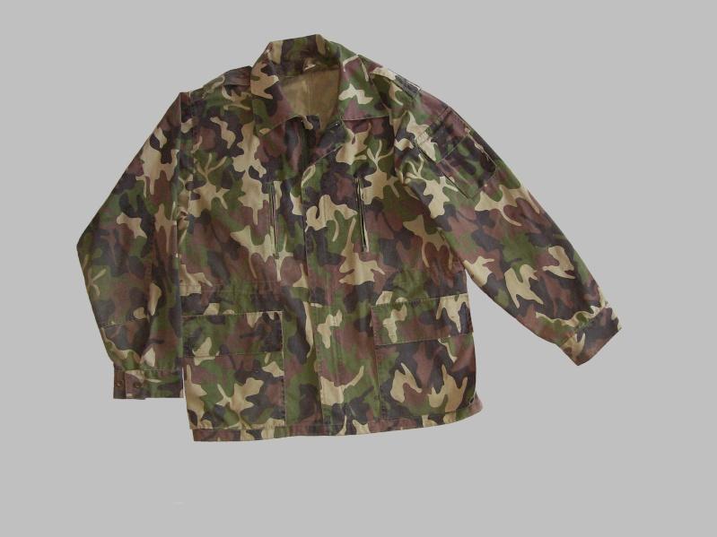 Serbian of Bosnian and Srpska repubic camouflage 100_8511