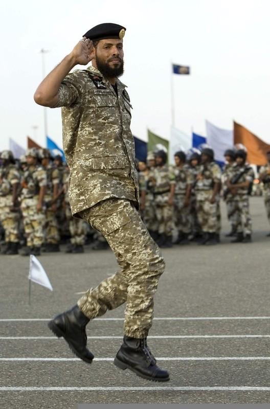 Royal Saudi Land Forces Arabie10
