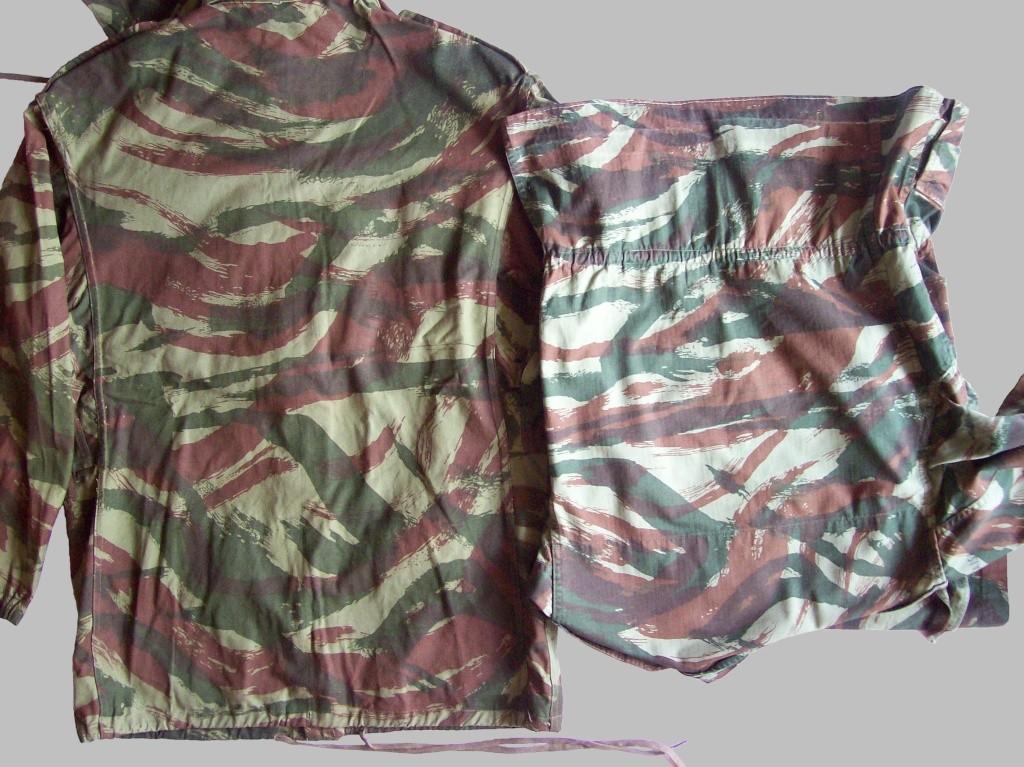 lizard pattern F1f210