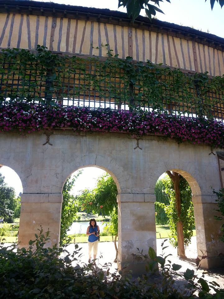 Hameau du Petit Trianon : Restauration de la maison de la Reine  - Page 2 10917810