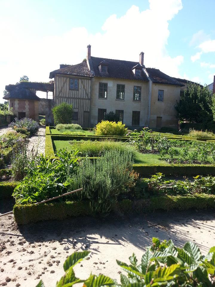 Hameau du Petit Trianon : Restauration de la maison de la Reine  - Page 2 10957810
