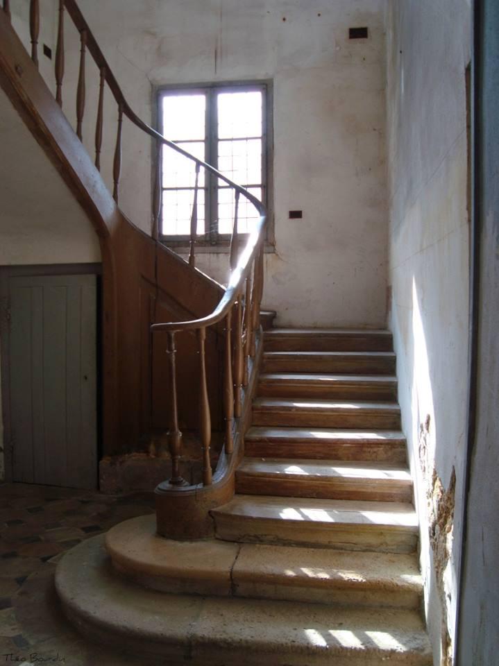 Hameau du Petit Trianon : Restauration de la maison de la Reine  - Page 2 19482410