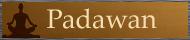 Demande du forum : les bannières des rangs [Résolu] Padawa11