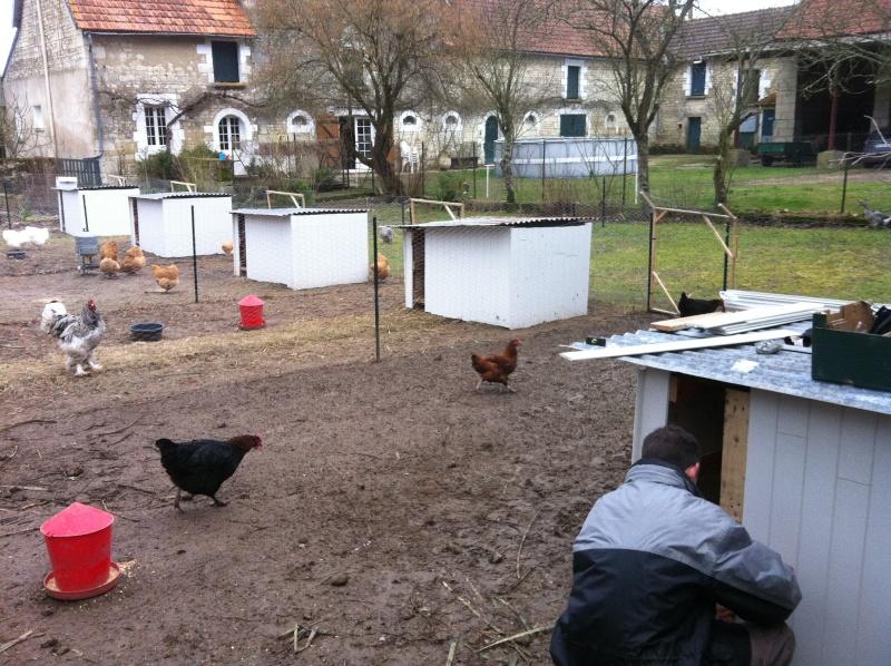 chez alex et ses poules de luxe ;) Fin_ca10