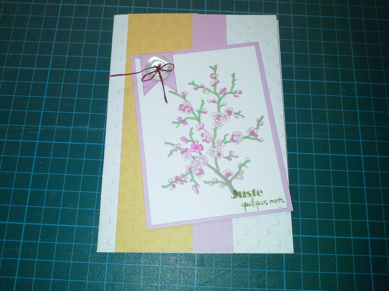 cardlift de février  - Page 2 Cavc_c10