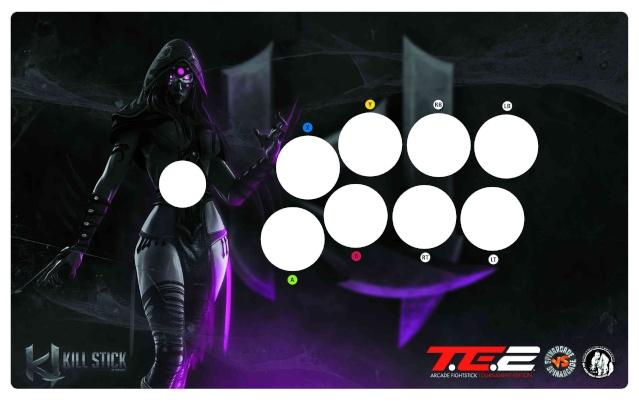 arcade stick killer instinct database Mad-ca10