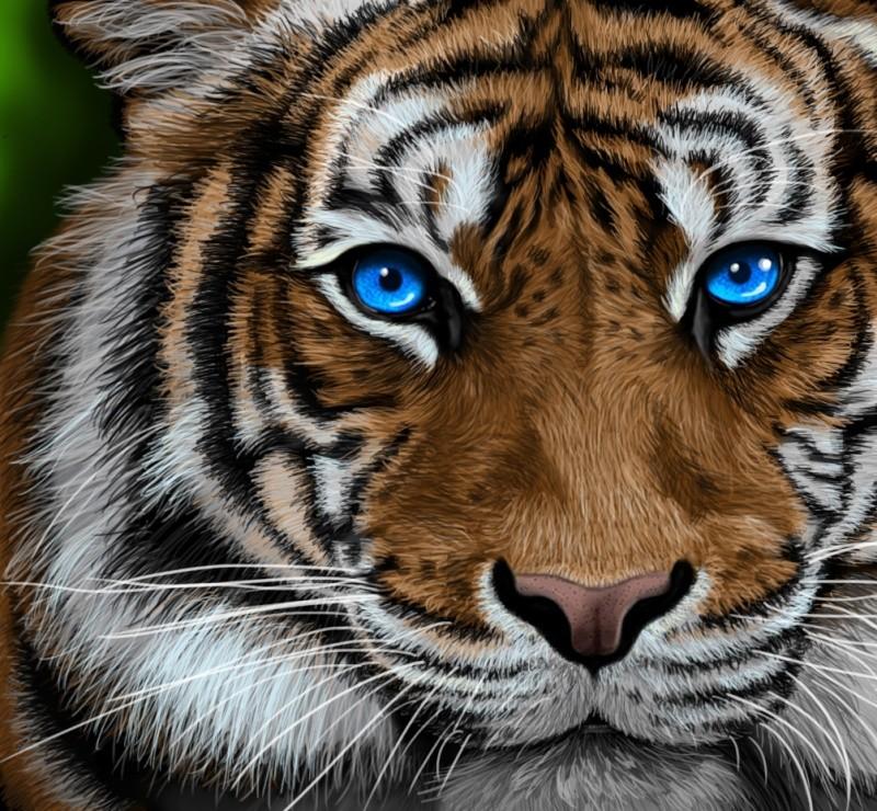 [Photoshop] Dessiner des poils d'animaux avec l'outil doigt Tigre10