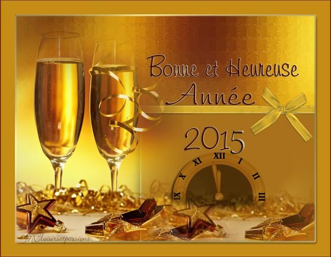 MEILLEURS VOEUX POUR 2015 Bonne_10