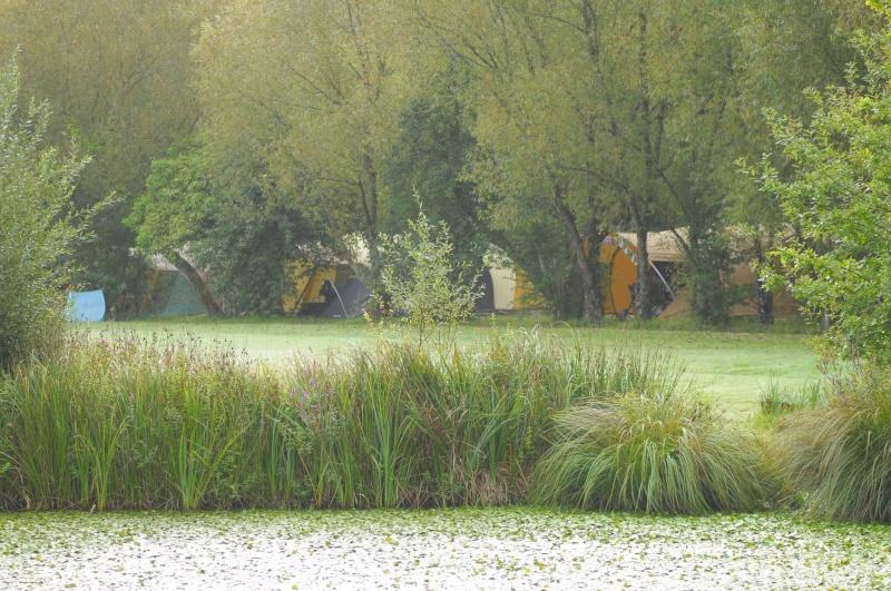 Sites et  Paysages Les Saules (Loir et Cher) - Page 2 3_bisc10