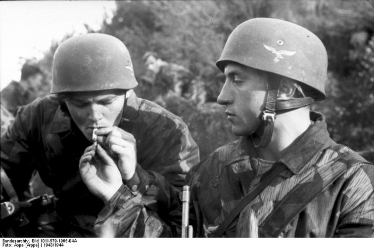 Les combattants des armées régulières Fallsc10