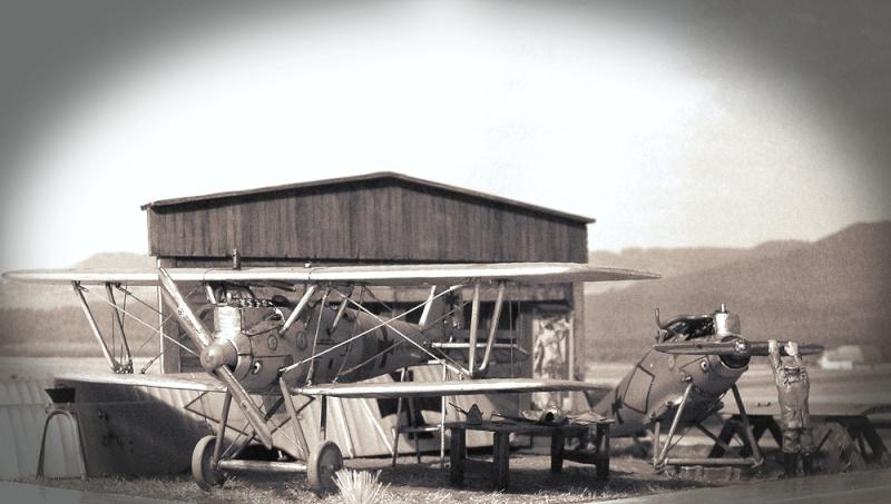 Pfalz D-III et D-IIIa en réparations, MAC Distribution 1/72 Pfalz_17