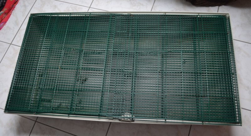 VENDUE - A CLÔTURER ! Grande cage Marchioro (57) Cage_m10