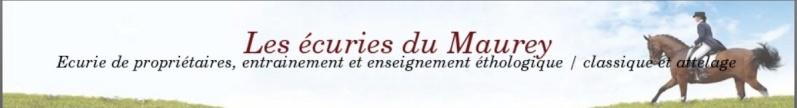 27-Les écuries du Maurey à Drucourt (Camille Mercier) Ecurie10