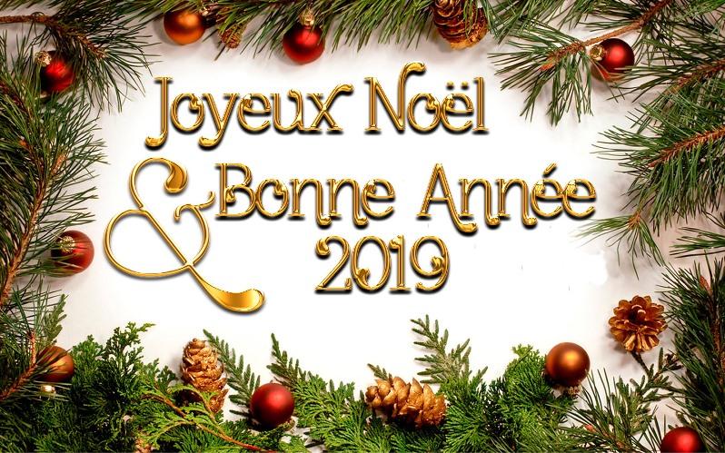 Joyeux Noël et bonne année 2019 Voeux10