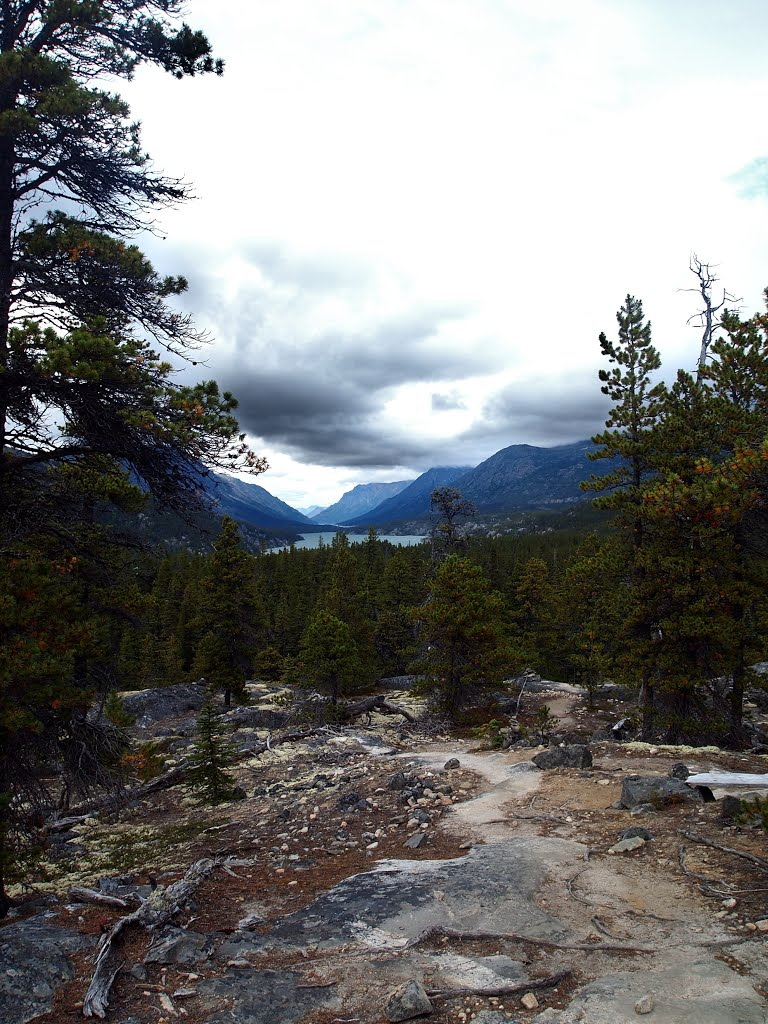 Fièvre de l'Or - Chilkoot Pass - Klondike - Yukon - Alaska - Page 2 97645510