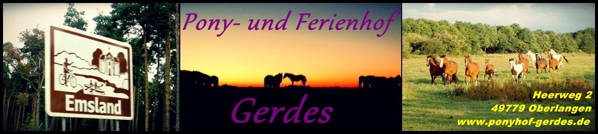 Ponyhof-Gerdes