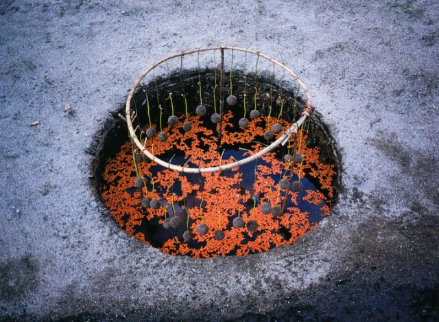 [Land Art] Andy Goldsworthy, Nils-Udo... [INDEX 1ER MESSAGE] - Page 5 Aaaa11