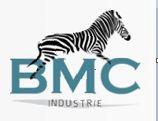 Romuald Custom-rc  Bmc210
