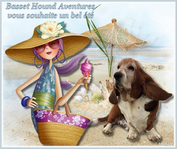 créer un forum : basset hound aventures - Portail Banniz12