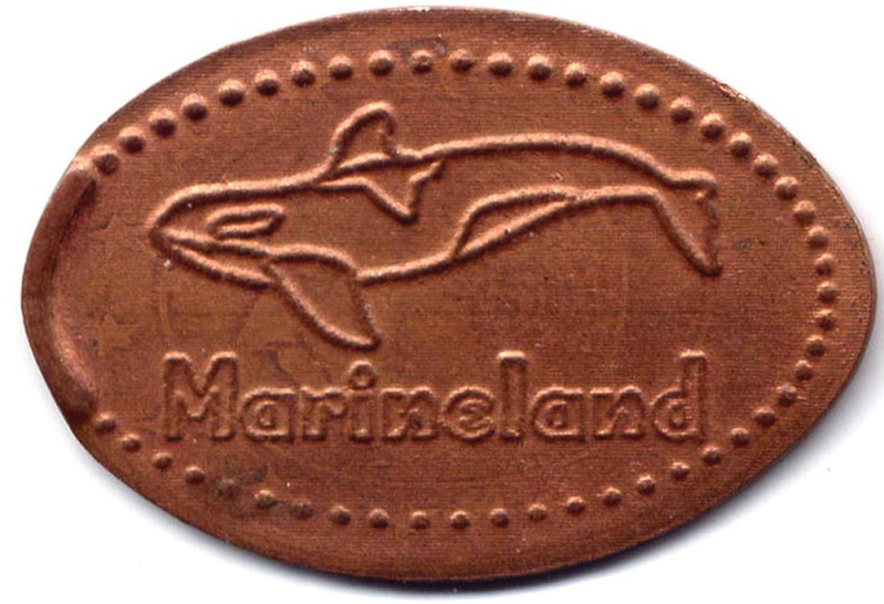 Antibes (06600)  [Marineland] Ecrasa10