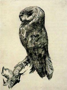 Oiseaux de nuit - Page 2 Chouet12