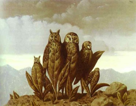 Oiseaux de nuit Magrit10