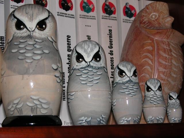 Oiseaux de nuit - Page 3 Poupye13