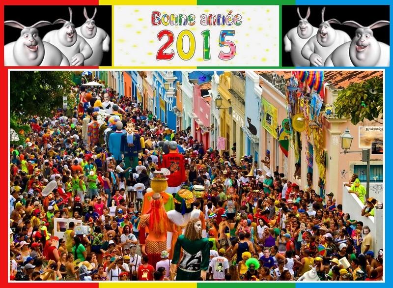 Bonne année 2015 Rio4_b10