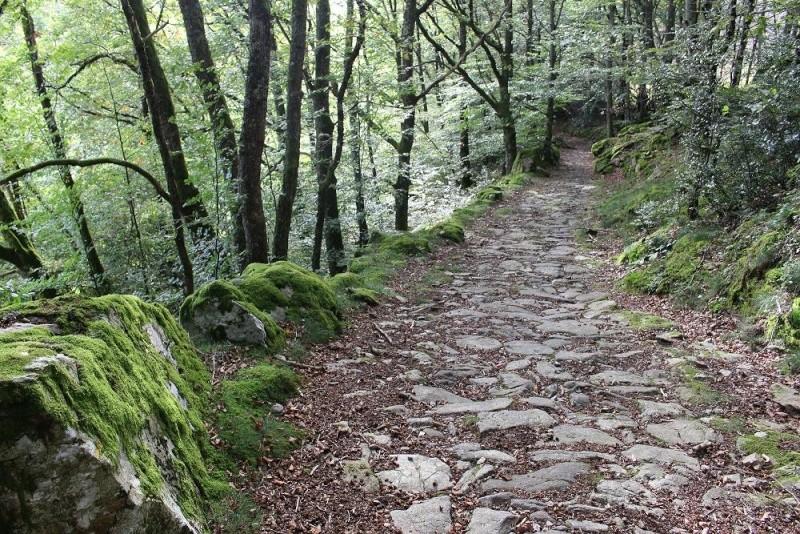 Oukecé dans le Cantal ?! Img_1610