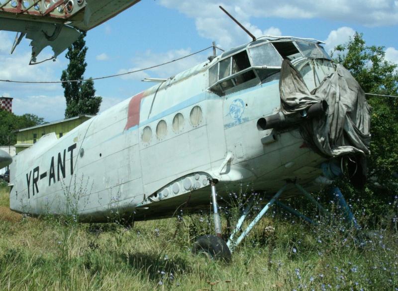 Antonov An-2 - Pagina 3 Yr-ant11