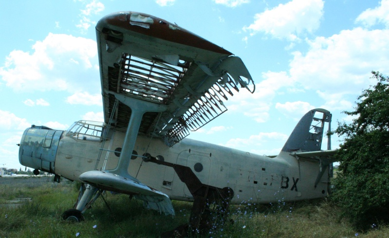 Antonov An-2 - Pagina 3 Yr-pbx11
