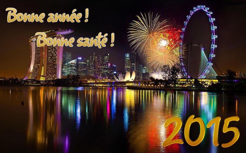 Bonne année 2015  14083910