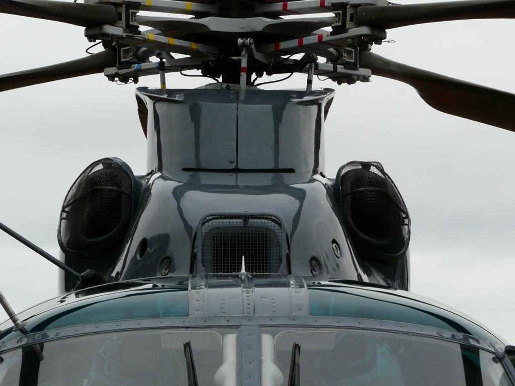 [ Aéronavale divers ] Hélicoptère DAUPHIN - Page 3 P1100723