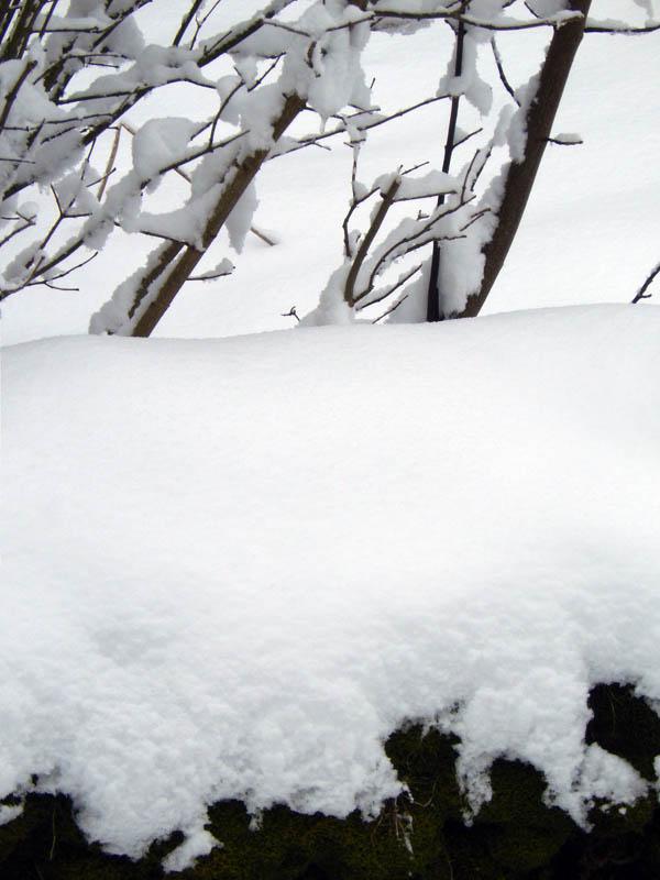 Plein de neige ! 2015-212