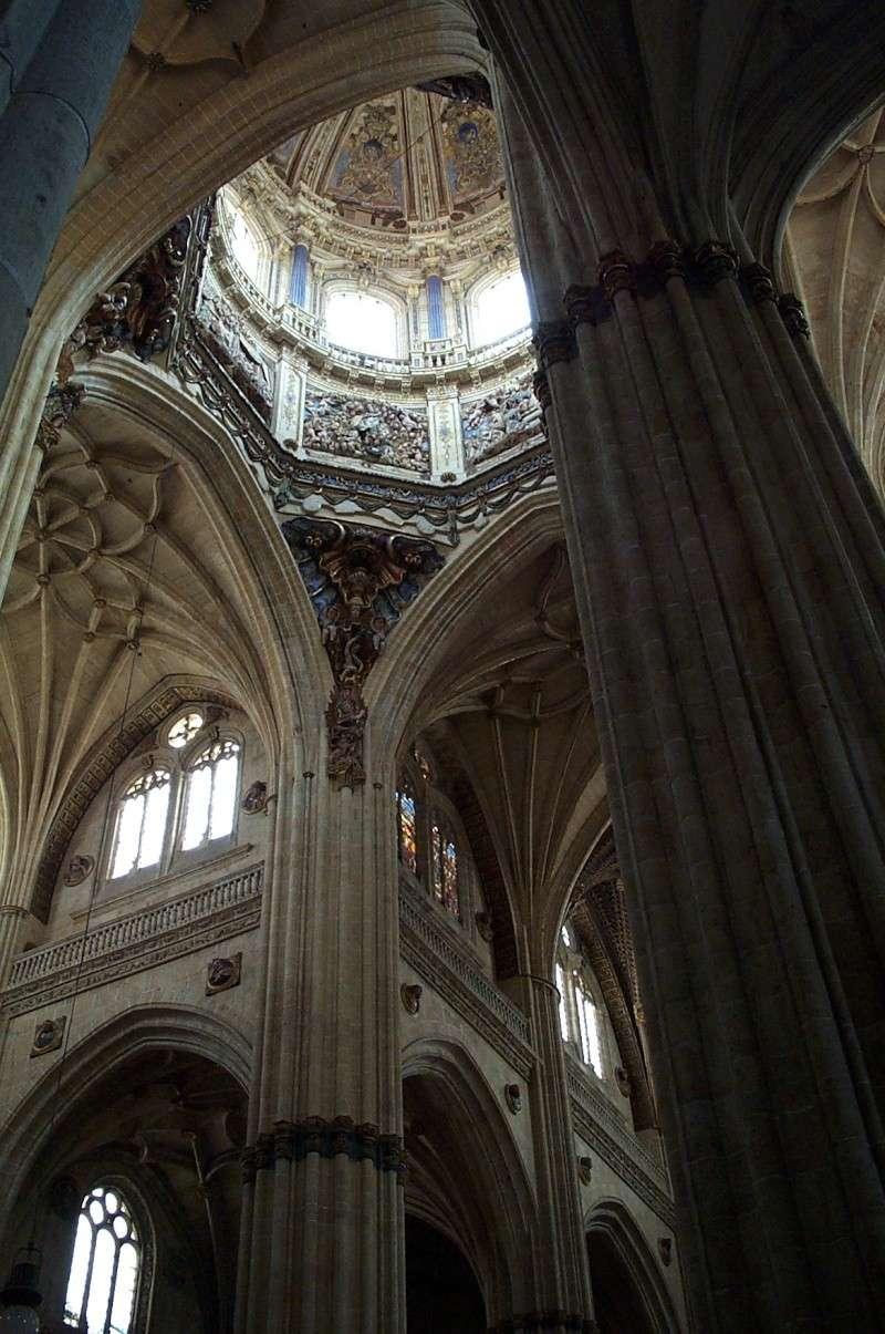 [résolu]cathédrale de Salamanque - Page 2 Dcp_4512