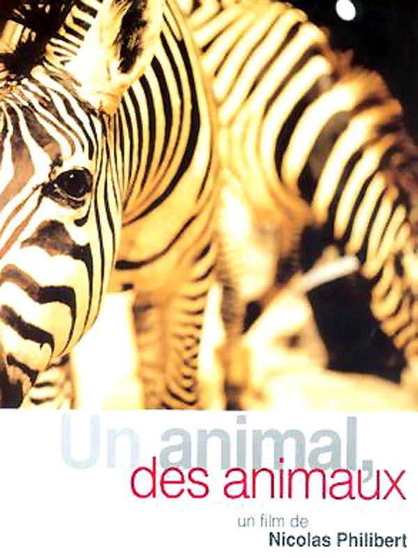 STREET VIEW : Les animaux - Page 2 Un_ani10