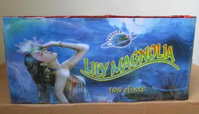 LILY MAGNOLIA 00410