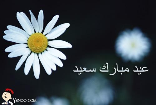 créer un forum : Islam-science - Portail Aid-mo10