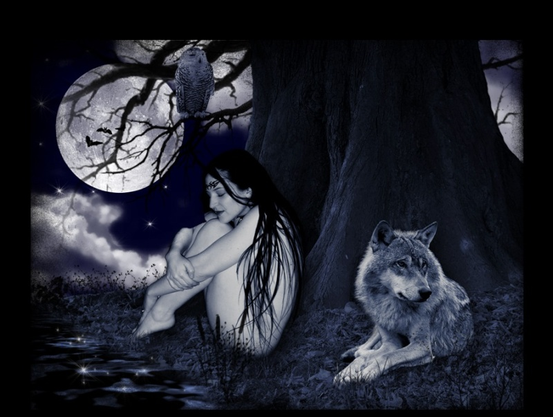 La femme et la Lune ...  - Page 2 Lune211
