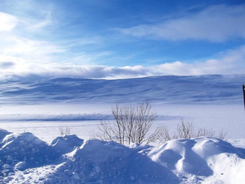 Paysages de Norvège Dscf3114