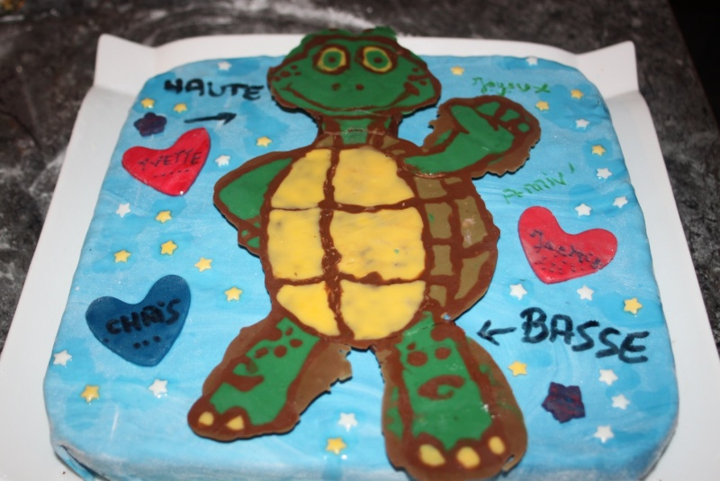 tortue - Page 13 Img_8011