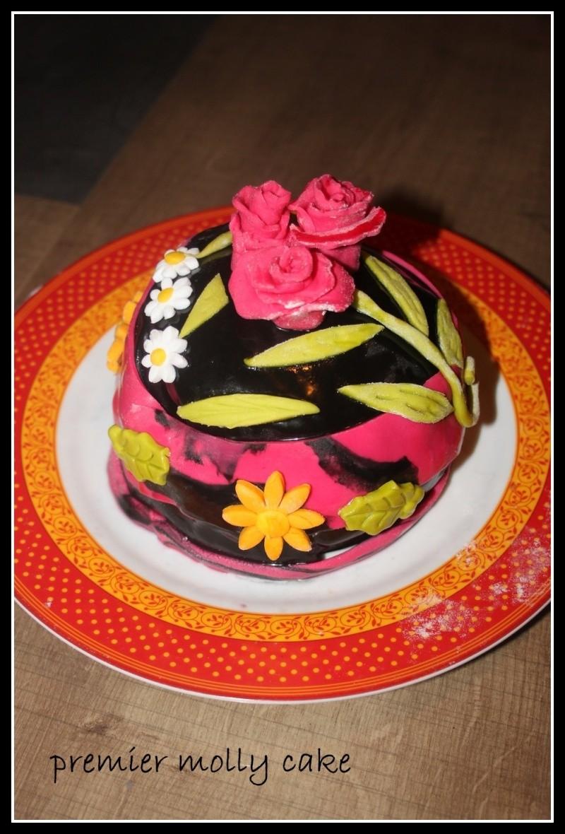 Un gâteau /mois. - Page 4 Img_8410