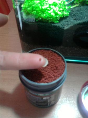 Granules  Photo010